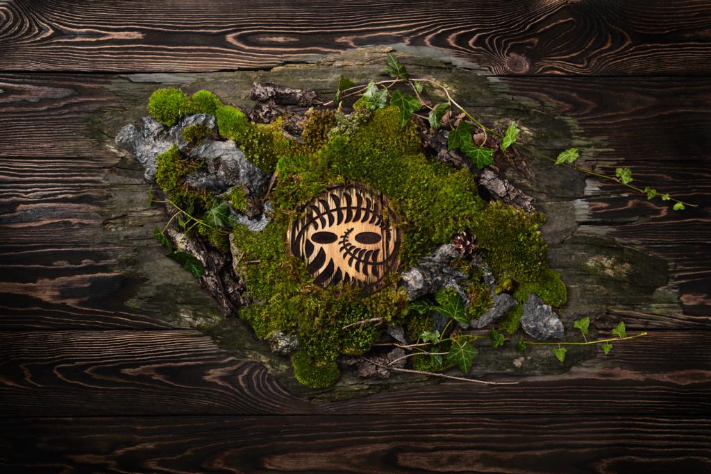 las w szkle wśród mchu i kamieni fotografia produktowa